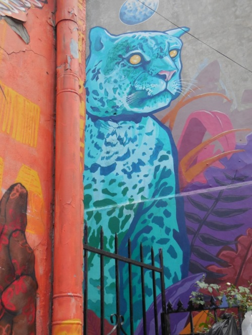 Valparaiso grafitti 7 (2)