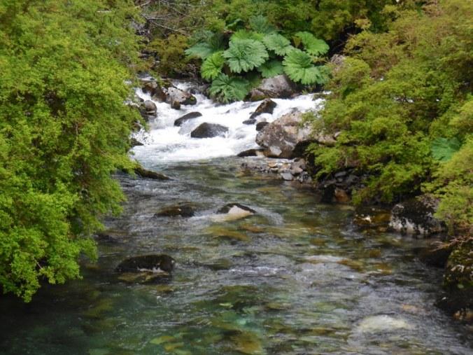 Chilean river 2