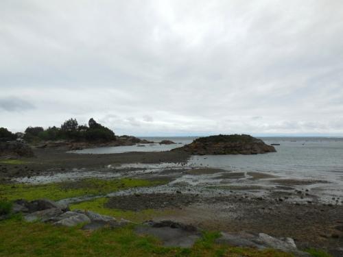 Shore scene 1