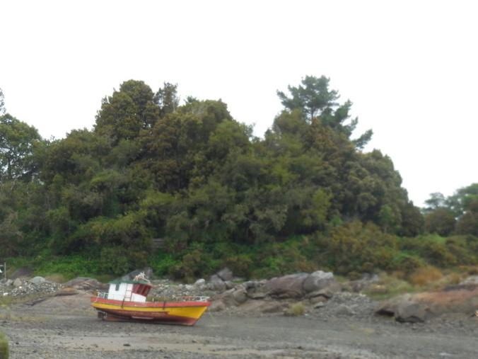 Shore scene 2
