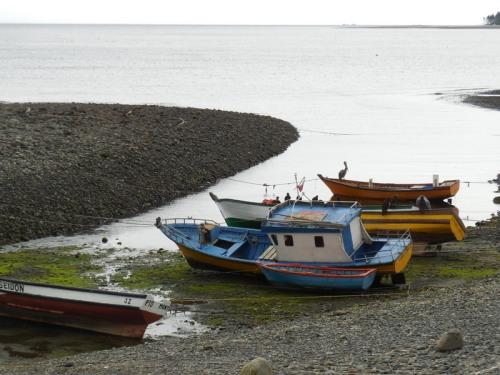Shore scene 5 (2)
