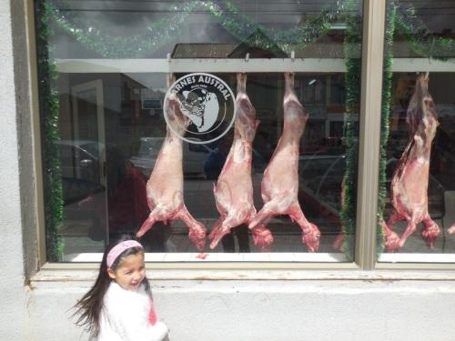 Lamb - yum 2