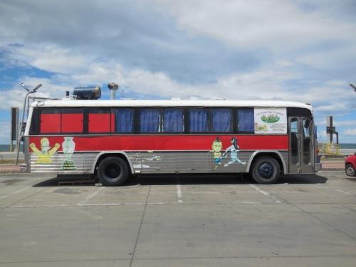 Punta Arenas bus 5