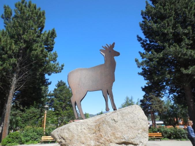 Deer found