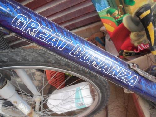 western bike