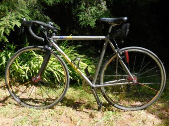 Nancy's new bike 1