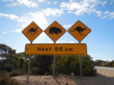 Nullaarbor sign 9