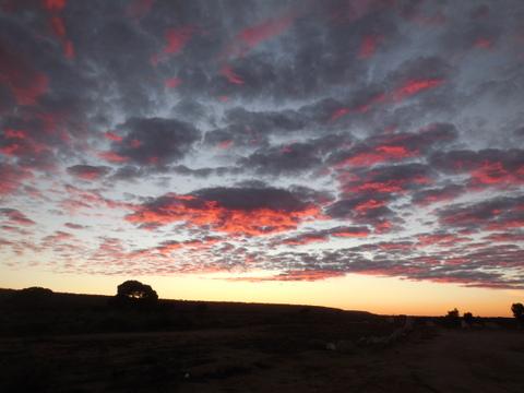 Nullaarbor sunrise