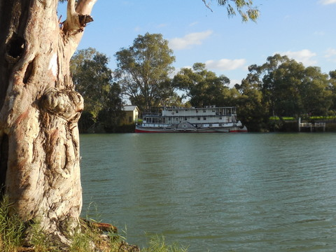Murray River paddlewheeler 2