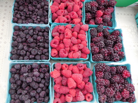 black-raspberries, raspberries and marionberries