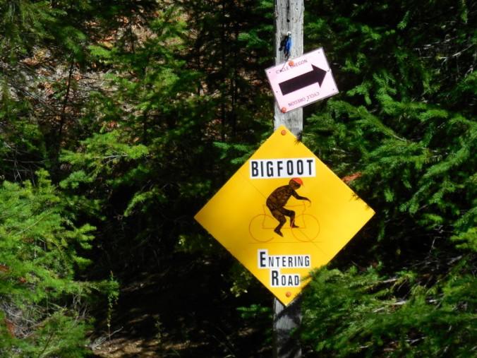 More Bigfoot