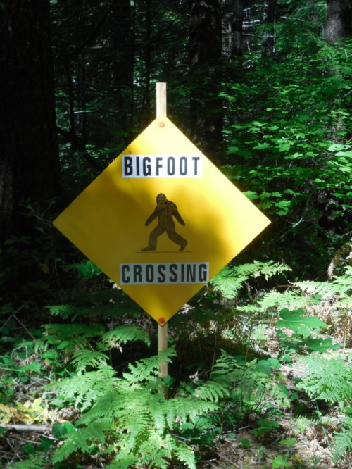 Our first bigfoot sign