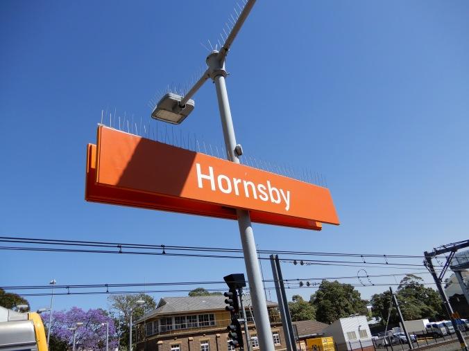 Hornsby - finally starting