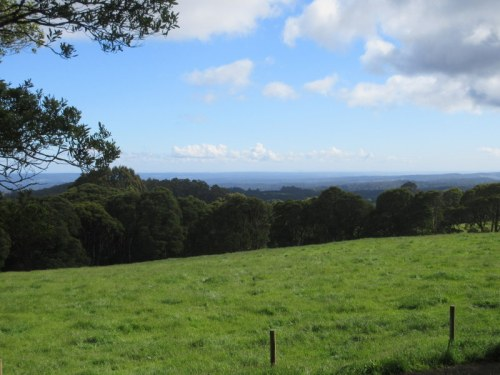 Otway Ranges in the morning 2