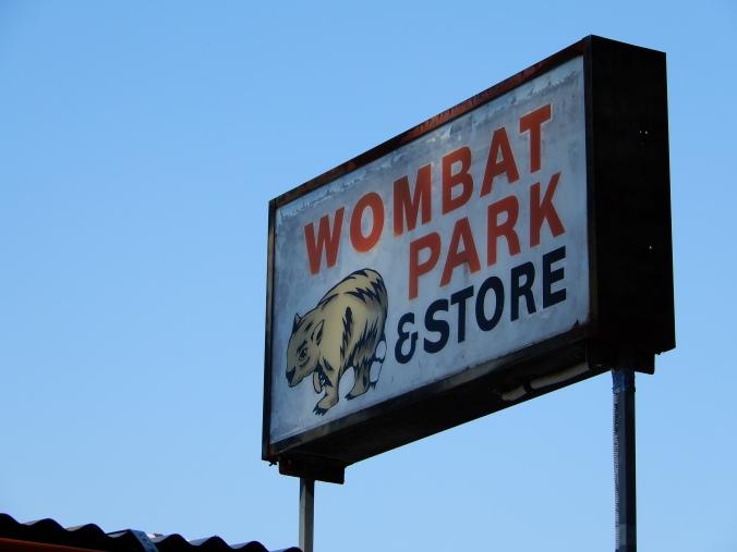 Wombat - finally