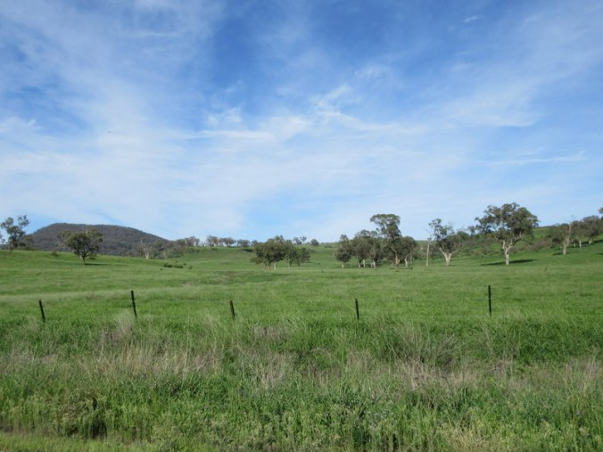 Bylong Valley view 2