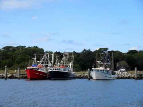 Feery - shrimp boats