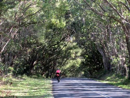 Hinterland road