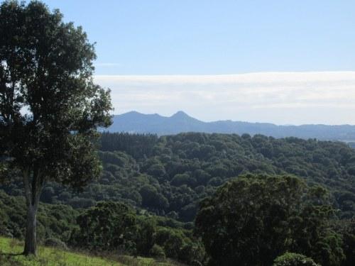 Hinterland view 3