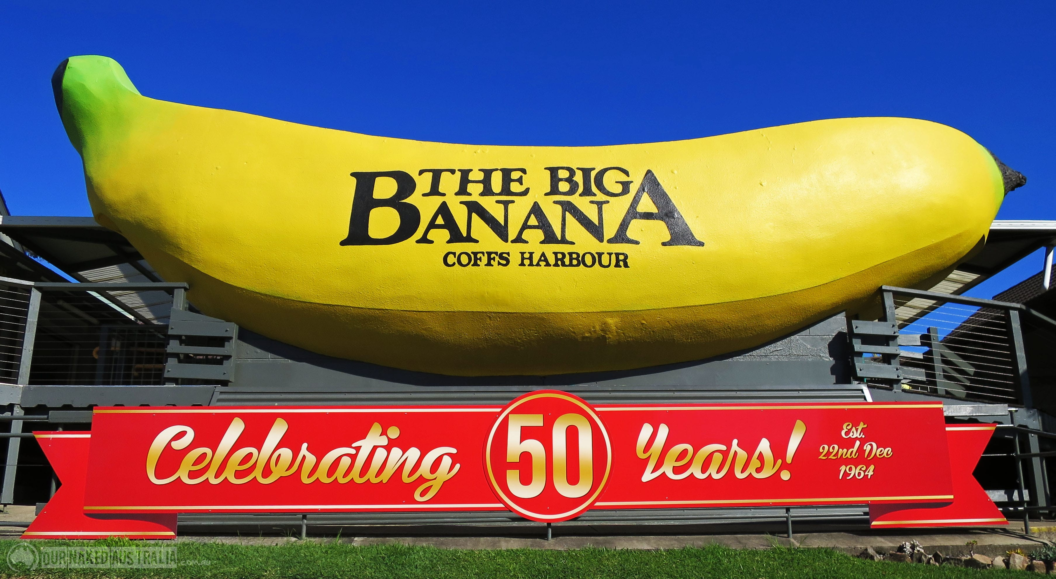 hold-a-sign-outside-of-the-big-banana