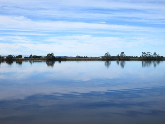 Morning on the Macleay River 3