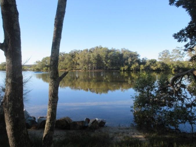 Nambucca River in the morning 1