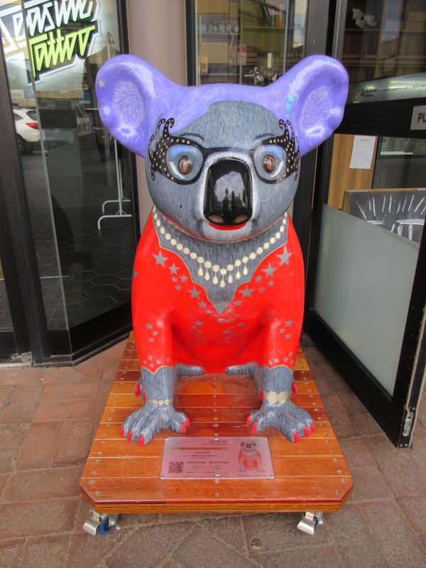 Port Koala 2