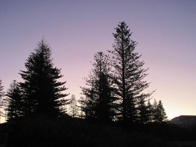 Yamba sunset 8